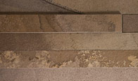 Tropical Porphyry Strips