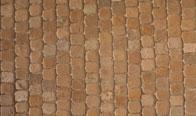 Sierra Sandstone Tumbled 4″x4″