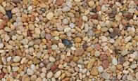 Salmon Bay Pebble