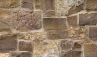 Southern Walnut Limestone Thin Veneer